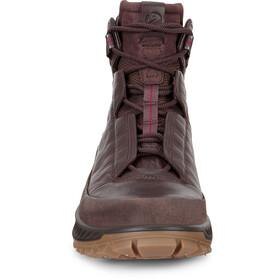 ECCO Exostrike Boots Men, coffee/mocha